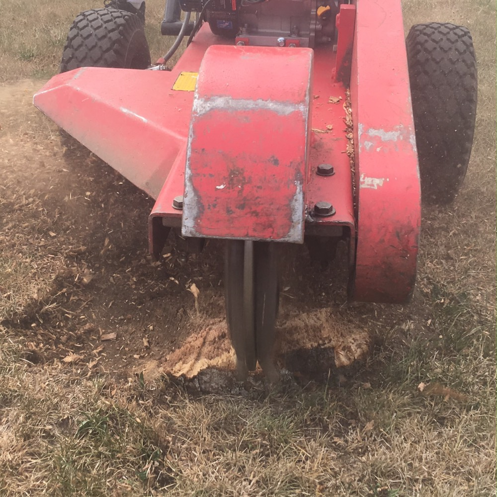 Stump Removal Services Ontario