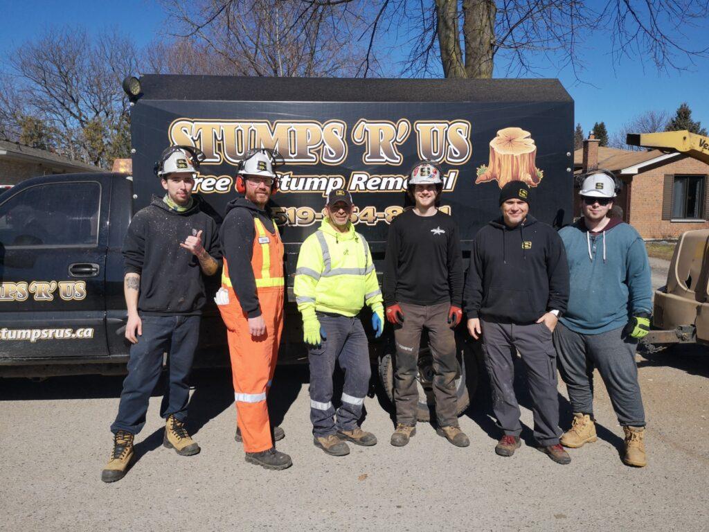 Tree Service Team